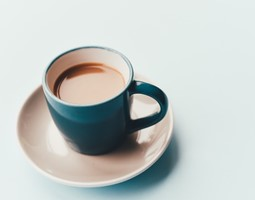 The effects of tea extract in older adults