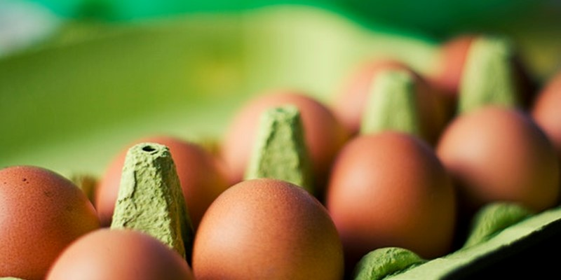 'Sunshine eggs': a novel vitamin D fortified food to improve vitamin D status in consumers