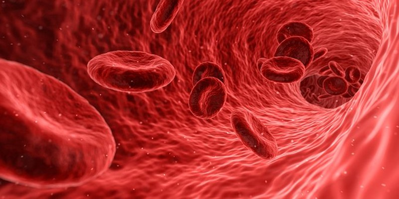 Lab-grown blood vessels given to people who need dialysis