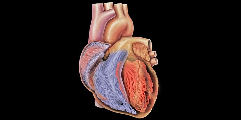 Call for Public Partners to inform a clinical trial of cardiovascular surgery
