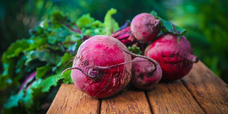 The effects of beetroot in older adults - second call