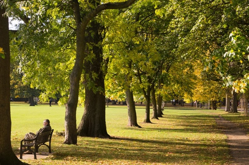 Newcastle residents invited to give their views on city's parks